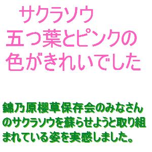 Cocolog_oekaki_2013_04_23_10_07