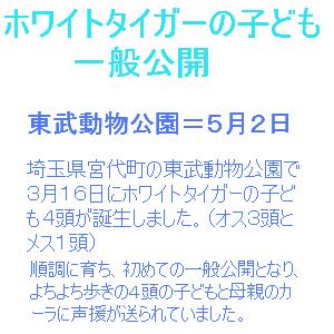 Cocolog_oekaki_2013_05_08_15_31